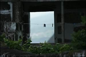 Altes Haus In Portugal Kaufen : azorenfotos von birgit t teil 1 azoren blog ~ Lizthompson.info Haus und Dekorationen