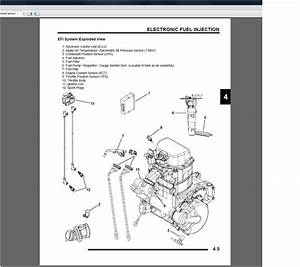 Polaris Ranger 900 Xp Wiring Diagram