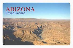 Images Blank Arizona Drivers License