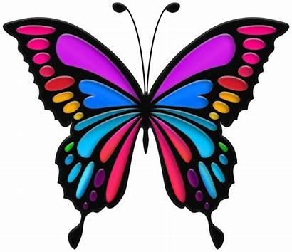 Butterfly Colorful Clip Clipart Butterflies Transparent Reception