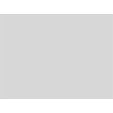 Gris Clair Peinture Peinture Aerosol Gris Clair Mat 400ml Intermodel