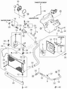 Manuals For Cooling System Diagrams Kia Carnival
