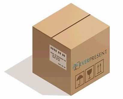 Box Tapes Cart Digital