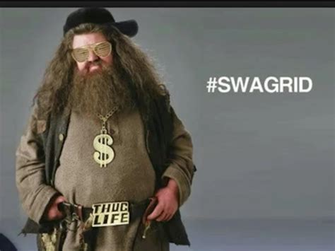 Hagrid Meme - swagrid harry potter photo 34755976 fanpop