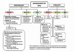 Initial Antibiotic Choice In Uncomplicated Cellulitis