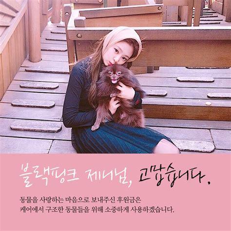 동물권단체 케어 On Twitter 팬클럽후원 블랙핑크 제니님의