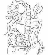 Seahorse Coloring Pages Template Print Shape Templates Colouring Crafts Animal Printable Sea Depressed Horse Getcolorings sketch template