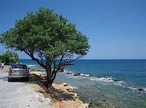 Scenic Photos: Greek Scenery Photos