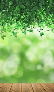 Free HD Nature Bokeh Phone Wallpaper...5547