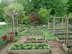 Backyard Organic Gardening Ideas - How My Dad Transformed