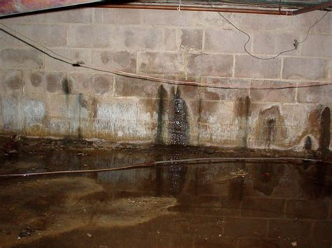 What To Do About Efflorescence Or Stained Concrete, Mold