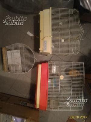 gabbie per cardellini mangimi gabbie per uccelli cardellini canarini posot class