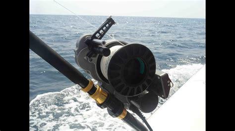 desrosiers matt yellowedge grouper