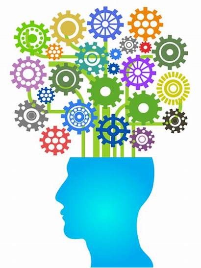 Brain Development Professional Learning Head Opportunities Executive