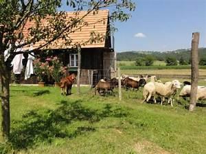 8443 Gleinst U00e4tten Leibnitz Steiermark Austria Oase Zum Verweilen   Bauernhaus In Sch U00f6ner Lage