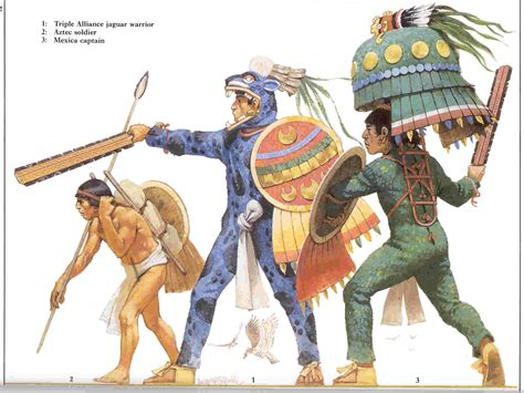 Aztec Organisation  Weapons And Warfare