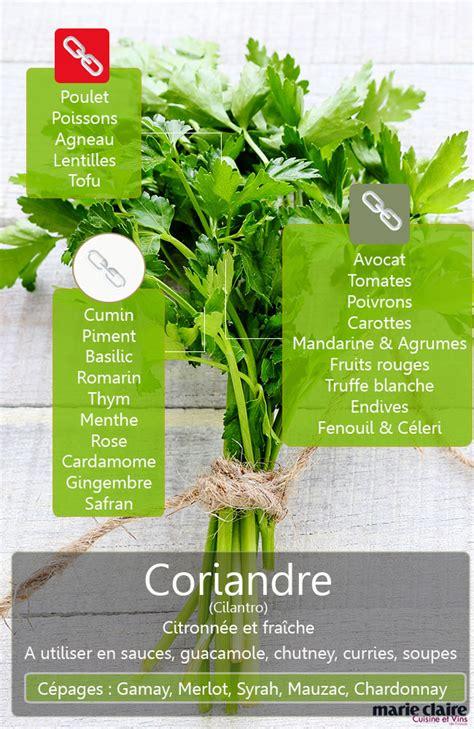 comment cuisiner les lentilles corail comment utiliser le cilantro ou coriandre en cuisine