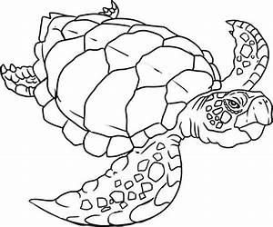 Sea Turtle Puppet Honu Sea Turtle Free Coloring Sheet ...