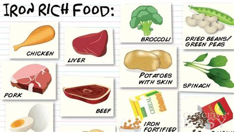 Tanda Tanda Hamil Iron Rich Foods To Battle Anemia In Pregnancy Conceiveeasy