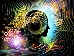 Instinctive Choices - An Exploration of Intelligence ...  Mind