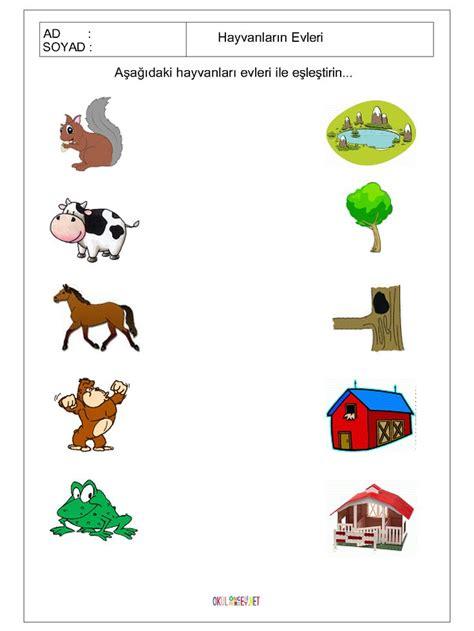 printable matching animals   home worksheet