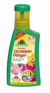 Dünger Für Orchideen : biotrissol orchideen d nger 250 ml neu der palmenmann ~ Eleganceandgraceweddings.com Haus und Dekorationen