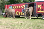 Come to the circus tonight at Riverside Park in Ypsilanti