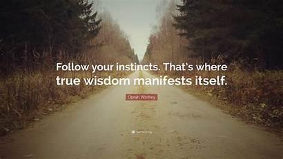 Instincts Follow True Wisdom Manifests Itself Quote