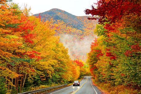 foliage drives   england
