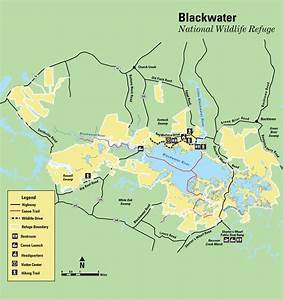 Blackwater National Wildlife Refuge - Maplets