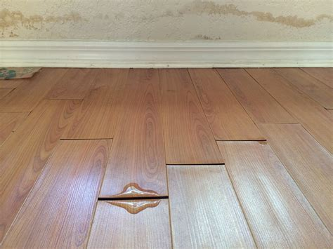 Laminate Floor Water Damage Insurance