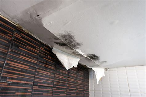 damaged ceiling  water leak stock photo