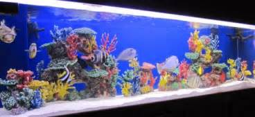 instant reef r048 artificial coral reef aquarium decor for saltwater fish marine fish tanks