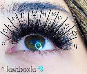 614 Best Lash Extensions Images On Pinterest