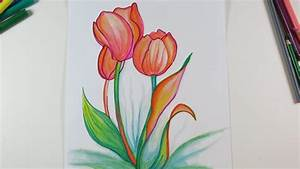 DIY Drawing Beautiful Tulips Cute Drawings for Kids , My
