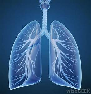 What Are The Most Common Causes Of Chest And Lung Pain