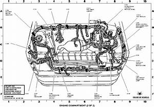 Hi  Need Wiring Diagram On Injectors  Van E350 98mod