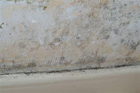 moisissure mur chambre moisissure mur chambre moisissure murs chambre antibes