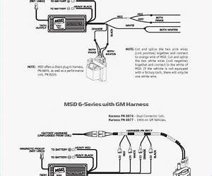 16 Brilliant Msd 6a Wiring Diagram Gm Hei Collections