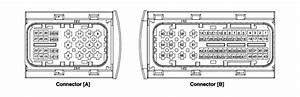 Kia Niro   Dct Control Module  Tcm  Schematic Diagrams