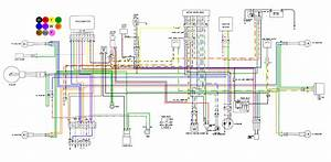 Crf450x Australian Wiring Diagram  Coloured