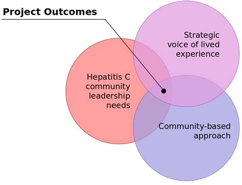 hepatitis  leadership project pacific aids network
