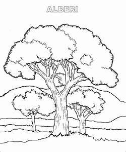 Disegni Di Massima Degli Alberi Immagini Da Colorare Pravresh Com