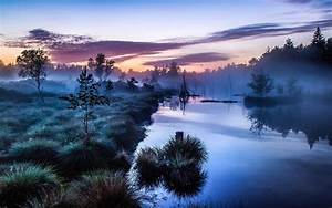 Landscape, Nature, Mist, Sunrise, Trees, Shrubs, River, Germany, Calm, Water, Blue, Morning