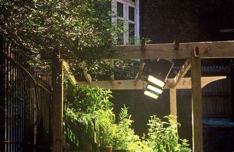 apartment plants outdoor interior design to nature