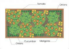 4x8 Raised Bed Vegetable Garden Layout by Raised Square Foot Gardens On