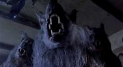 Film Review: The Company of Wolves (1984) | HNN