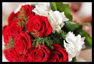 Bouquet Fleur Mariage : photographe mariage le bouquet de la mari e ~ Premium-room.com Idées de Décoration