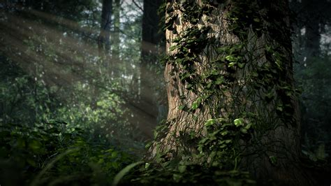 Forest Scene by SXPanda on DeviantArt