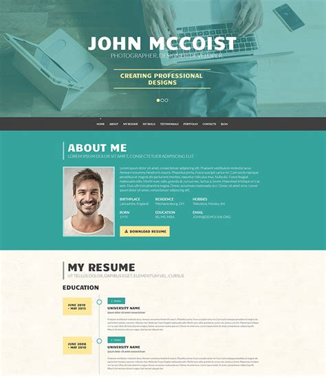 15 best resume cv themes freesumes